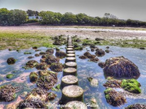 Stepping Stones by Mike Hillen