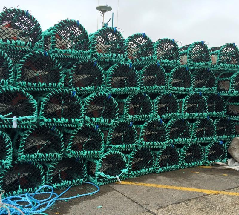 Fish Week Lobster pots