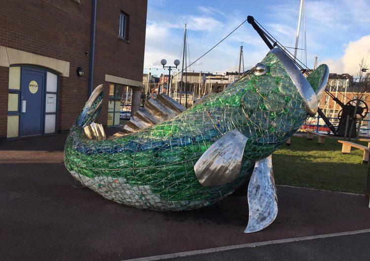 Bertie the Sea Bass