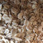 porridge oats jumbo